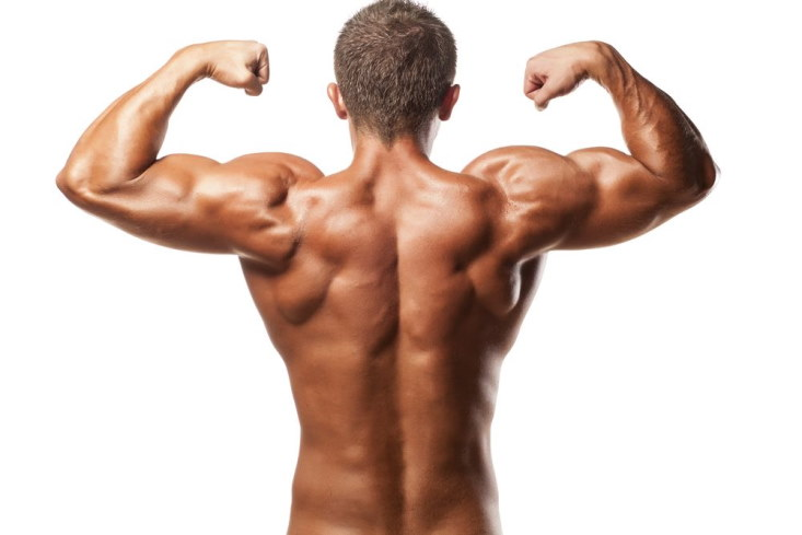 The Best Exercises for Toned, Strong Back Muscles