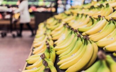 Bananas are Your Appetite Killing Friend